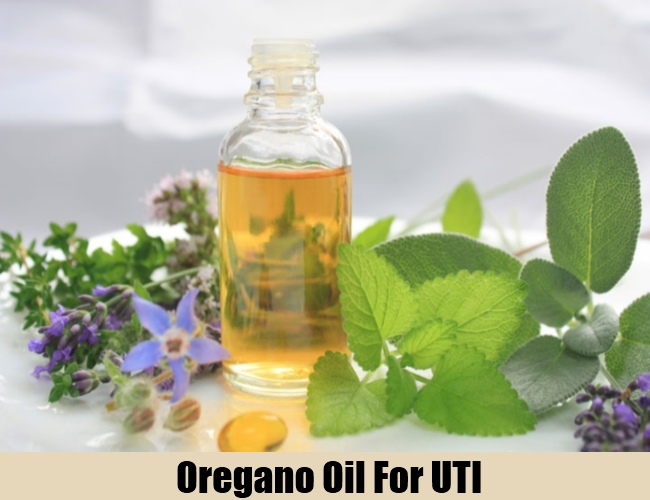 Using Oil Of Wild Oregano For Urinary Tract Infections (UTI)